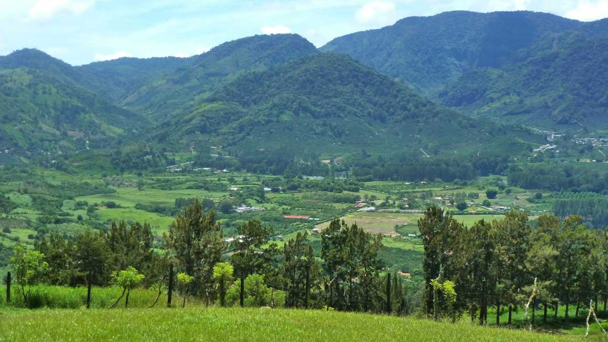 Finca Paraíso and stunning view over the Orosi Valley