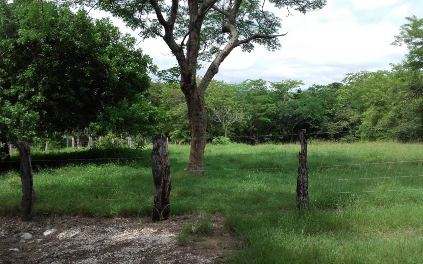 Hermosa Propiedad de 13 hectáreas de prados cerca de Nicoya