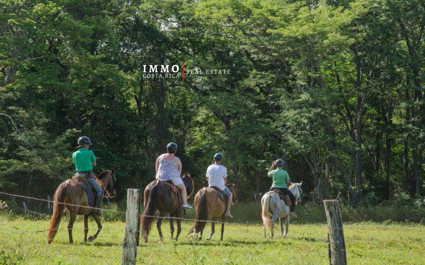 Hermosos lotes en la comunidad cerrada de Hacienda Pinilla