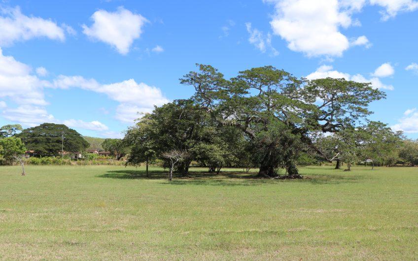 Fuerte potencial de tierra en la comunidad cerrada de Hacienda Pinilla